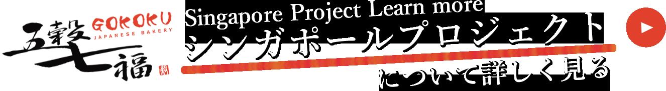 シンガポールプロジェクト詳しく見る